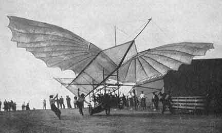 Albatros de Whitehead 1905